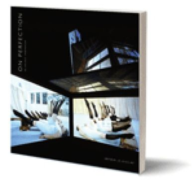 On Perfection: An Artists' Symposium [Critical Photography series, Intellect Books]