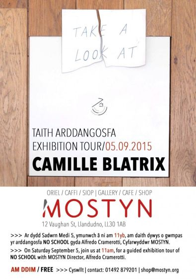 NO SCHOOL - Curator's talk & tour of exhibition by Camille Blatrix