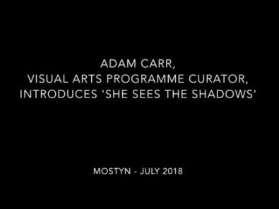 MOSTYN x DRAF Exhibition | Adam Carr and Olivia Lehay in Conversation