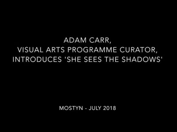 MOSTYN x DRAF Exhibition | Adam Carr and Olivia Lehay in Conversation
